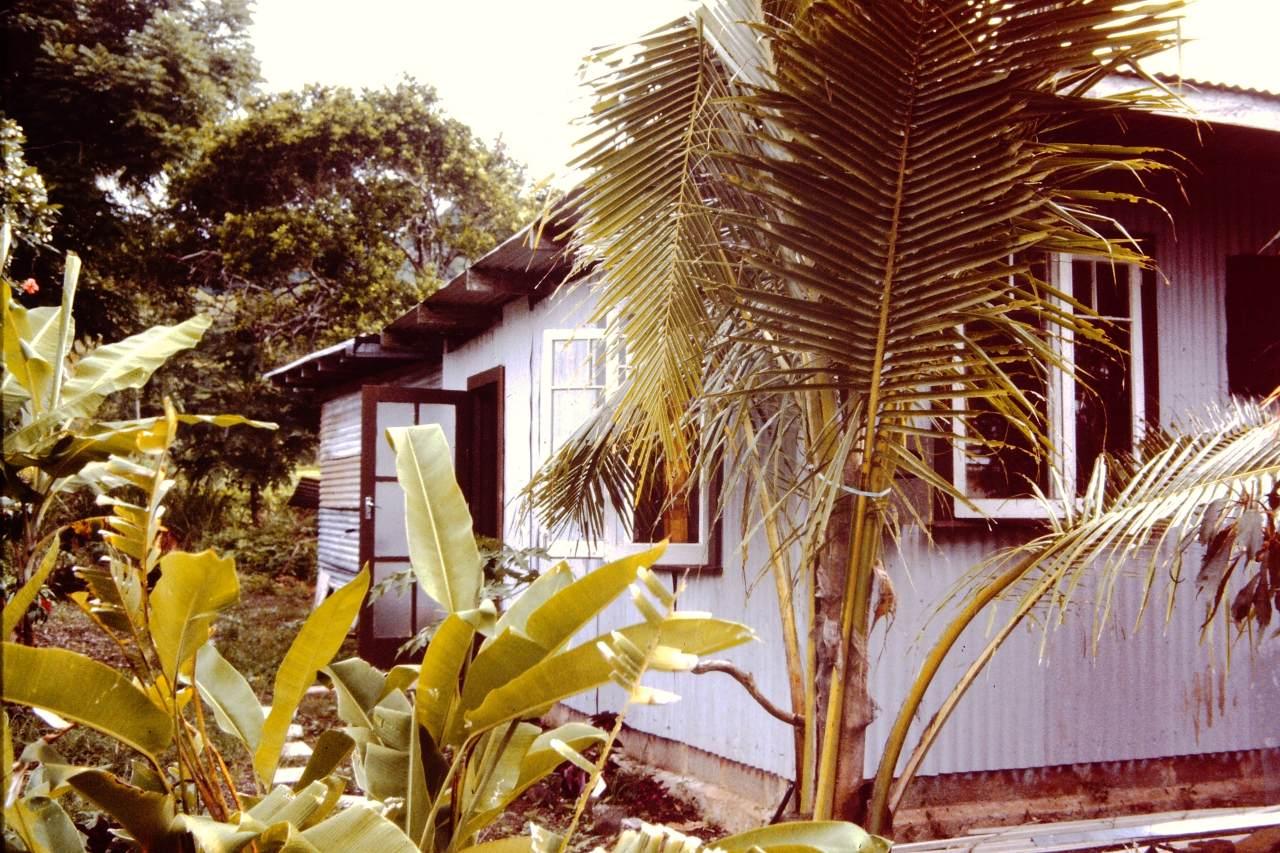 Cook Islands shack